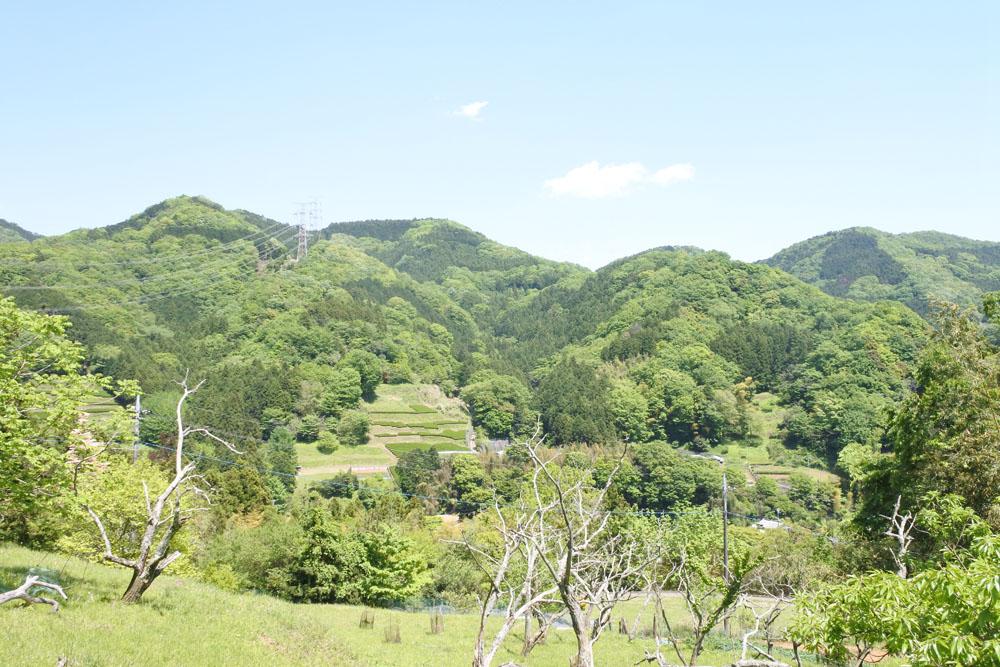 【シダンゴ山】仙人も弥勒菩薩も寄る地。宮地山を経由する日帰り登山