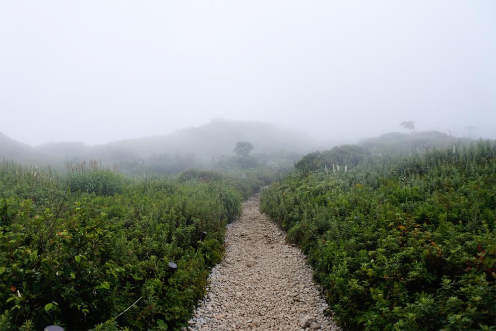 登山を健康のために始めたい。登山したときの健康効果と注意点