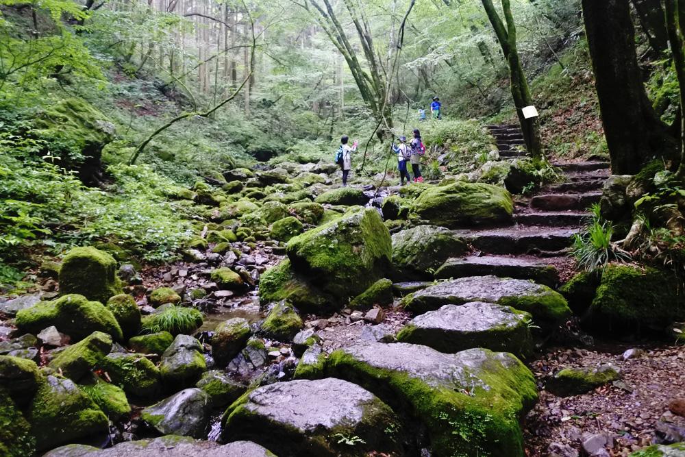 登山初心者はまず何からやるべき?揃えておきたい装備と歩きやすい山