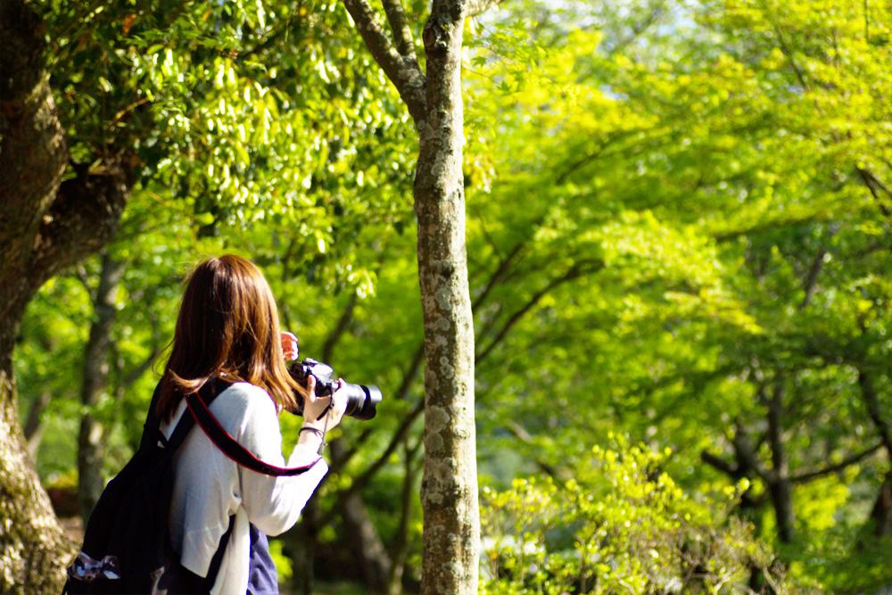 登山で使う双眼鏡の倍率は?動植物や景色を楽しむ山ならではの使い方