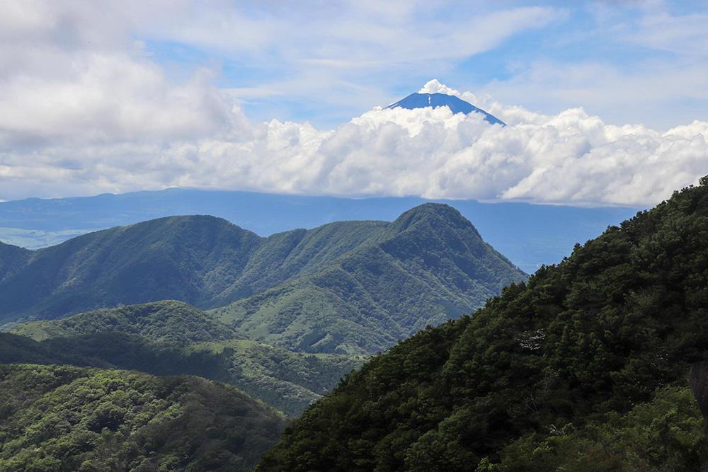 【明神ヶ岳登山】結構キツいは本当?富士山を眺めながら清々しい笹の稜線を歩く縦走登山