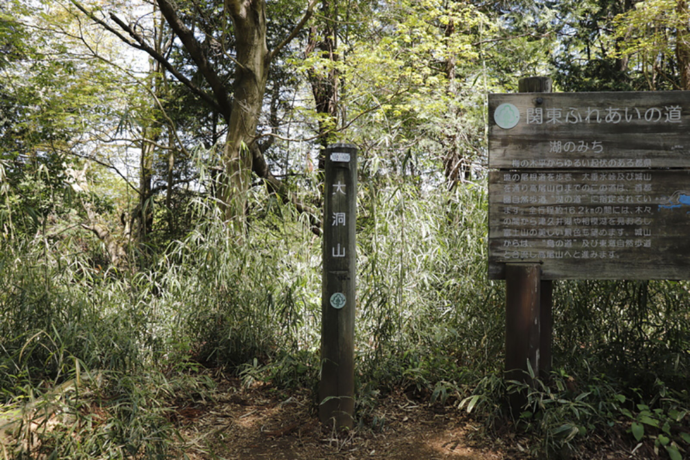 【南高尾セブンサミッツ】南高尾山稜の7つのピークを周回するロングトレイル!
