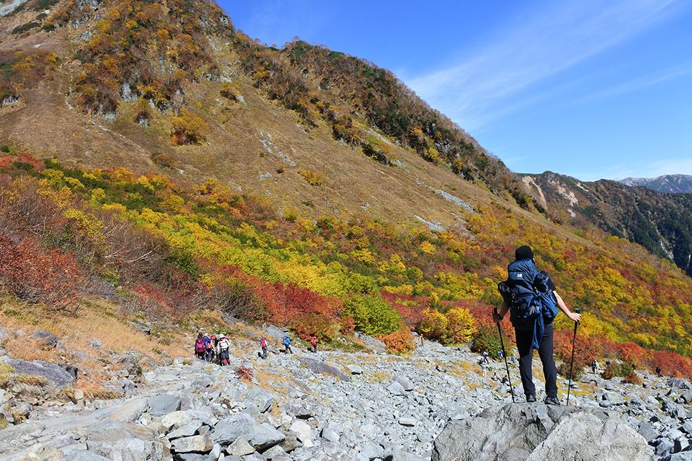 トレッキングポールは登山に必要?初心者こそ揃えておきたい理由と選び方